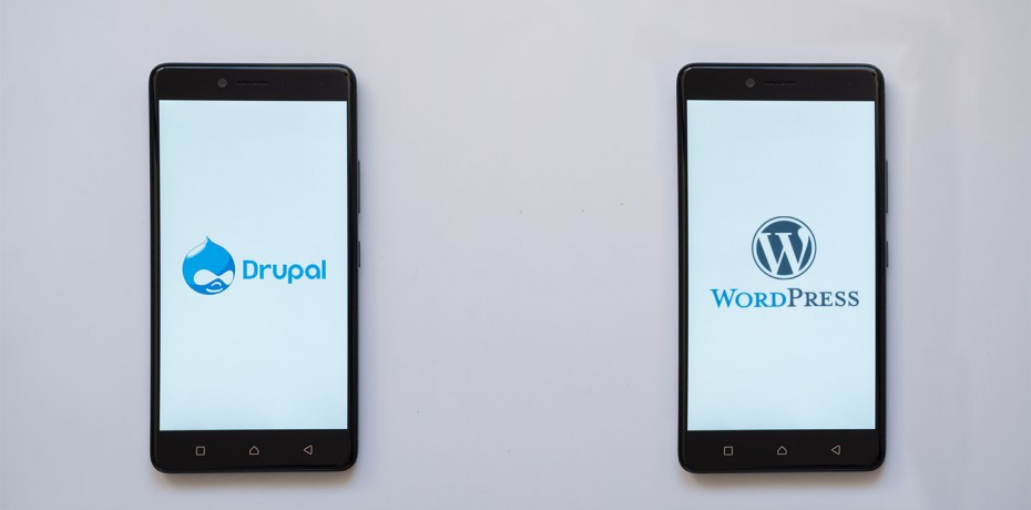 Drupal o Wordpress